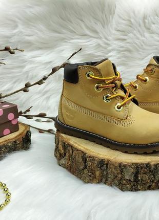 Нубуковые классные ботинки timberland ( 24 размер )