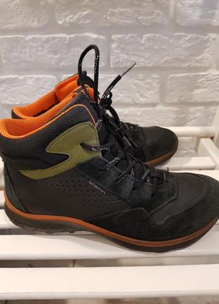 Демисезонные ботинки ecco biom в размере 37