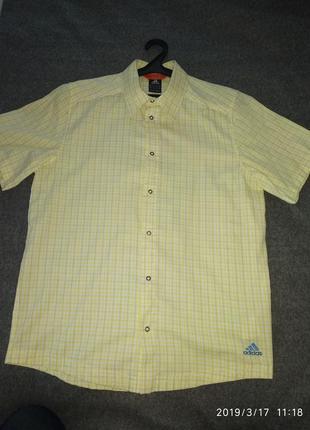 Классная летняя спортивная рубашка.