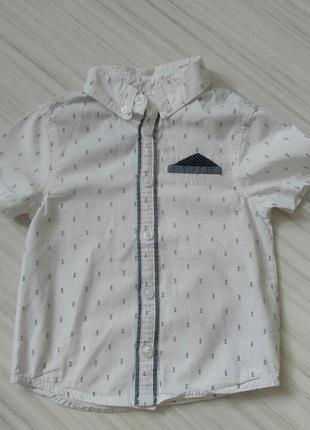 Рубашка белая з коротким рукавом