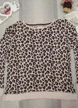 Свитшот реглан футболка большой размер в леопардовый принт от next