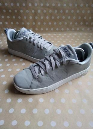 Стильні кросівки adidas advantage clean