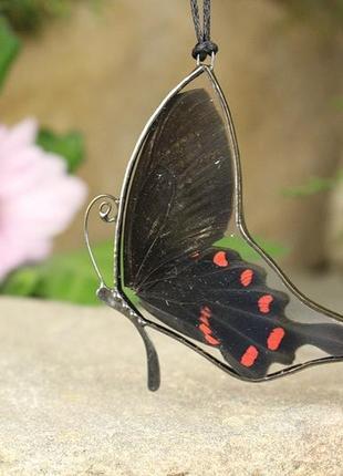 Кулон экзотическая бабочка уникальный подарок девушке