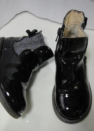 Фирменные кожаные деми сапоги, ботинки next р. 25-26 (8) (16,5см)