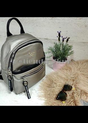 Стильный полуспортивный рюкзак от david jones cm5069t серебряный