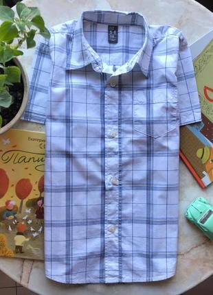 Рубашка в клетку zara на 5-6 лет