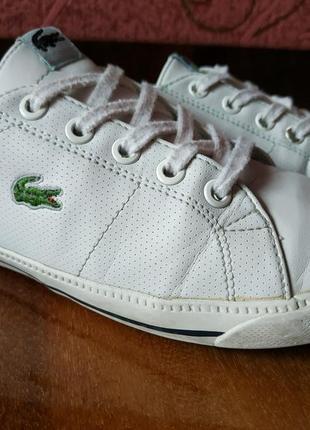 Фирменные кроссовки lacoste