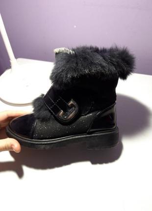 Чорні чобітки