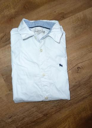 H&m белая рубашка на 11-12 лет
