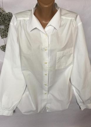 Шикарная рубашка walbusch