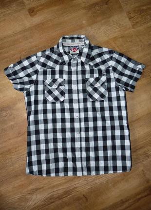 Lee cooper рубашка на кнопках на 11-12 лет