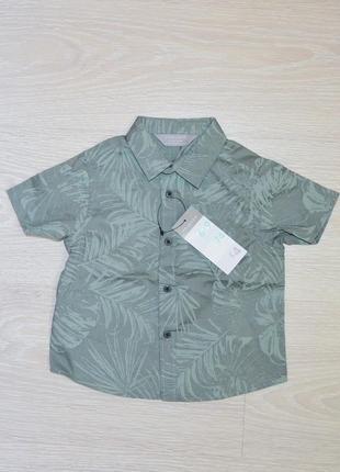 Рубашка на малыша primark 6-9 мес