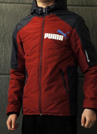 Шикарная мужская куртка ветровка puma