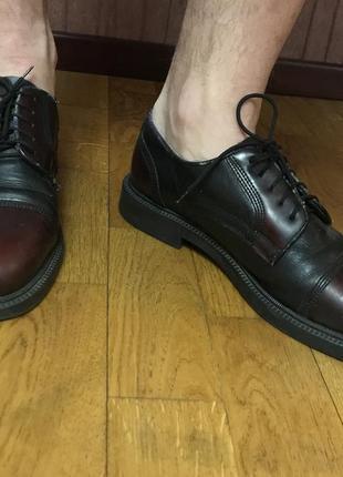Carlo pazolini туфли мужские броги