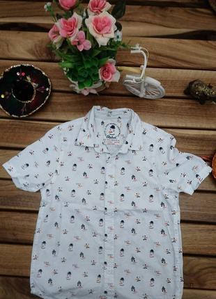 Рубашка на короткий рукав с красивым принтом от rebel primark 146 см 10 11 лет