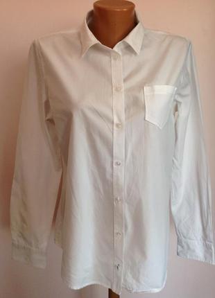 Фирменная котоновая офисная рубашка. /l/ brend marc o polo