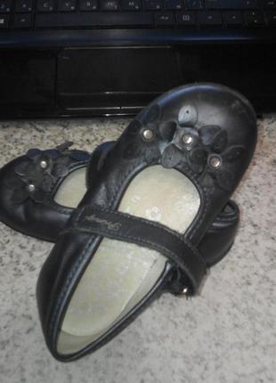 Темно-синие кожаные туфли primigi 25 размер