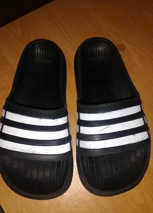 Шлепанцы adidas оригинал
