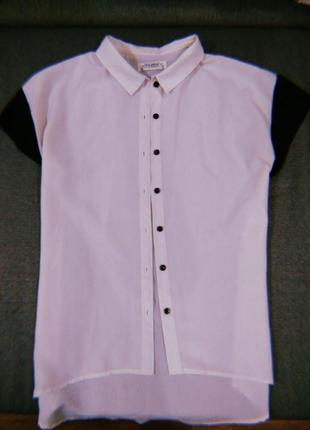 Рубашка | блуза с короткими рукавами