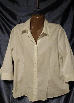 Блуза biaggini