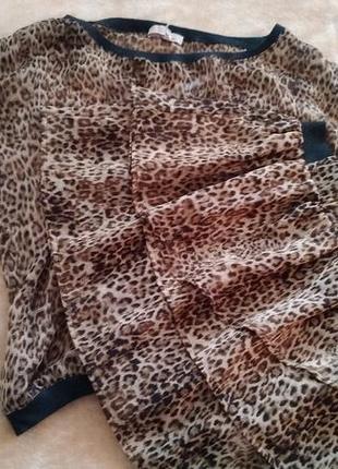 Леопардовый костюм юбка и блуза bershka