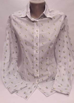 Etro! италия! трендовая рубашка#блуза люкс бренд хлопок