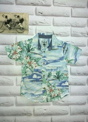 Летняя рубашка 12л tu