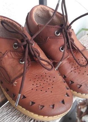 🐾 туфли кожа sibert (антошка)3 фото