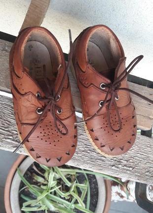 🐾 туфли кожа sibert (антошка)