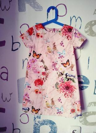 Платье next цветочное хлопок девочка 5-6 лет (116см) как новое
