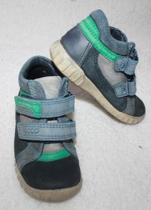 Ботинки кожаные фирмы ecco 24 размер по стельке 15-15,3 см.1 фото