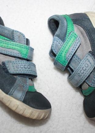 Ботинки кожаные фирмы ecco 24 размер по стельке 15-15,3 см.2 фото