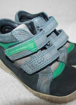 Ботинки кожаные фирмы ecco 24 размер по стельке 15-15,3 см.5 фото