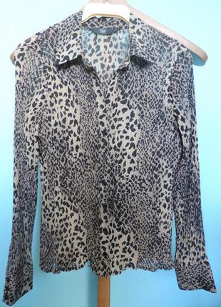 Блуза под леопард