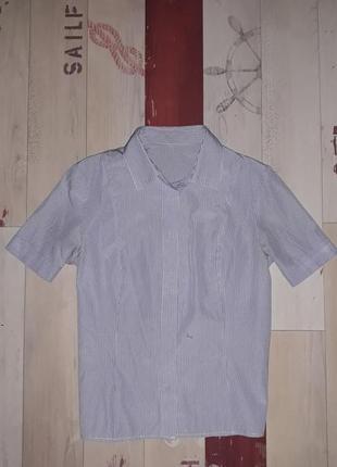 Рубашка с коротким рукавом размер 42-44