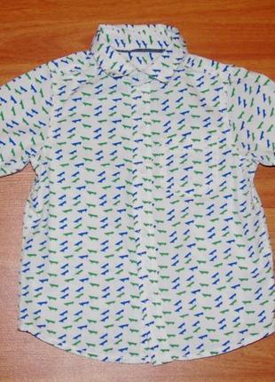 Белая летняя рубашка с скейтами,2-3 года,98