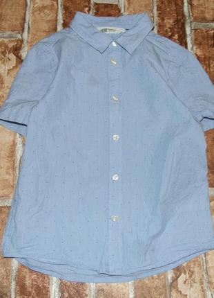 Котон рубашка тениска 7- 8 лет