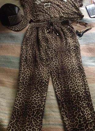 Трендовые леопардовые штаны .