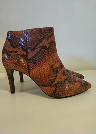Ботильоны ботинки натуральная кожа 38 змеиный принт рептилия