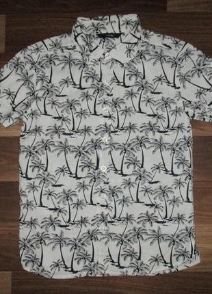 Клевая котоновая рубашка в пальмы фирмы джорж на 7-8 лет