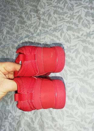 Кроссовки кеде adidas neo 23р.5 фото