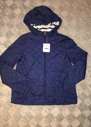 Куртка, вітровка, витровка