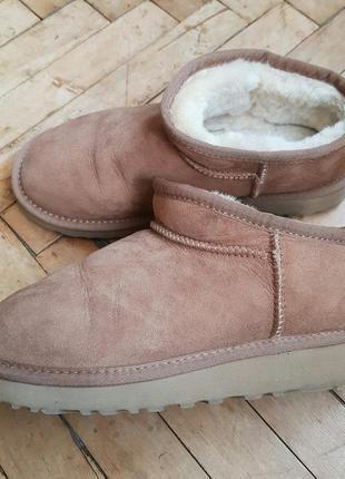 Угги сапожки ugg classic slippers australia (оригинал)