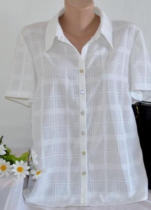 Брендовая белая блуза рубашка с коротким рукавом в клетку bm этикетка большой размер