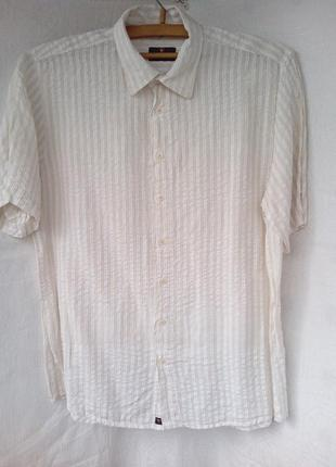12. сорочка чоловіча haupt мужская рубашка