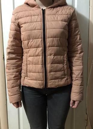 728e99ac Женские демисезонные куртки Calliope 2019 - купить недорого вещи в ...