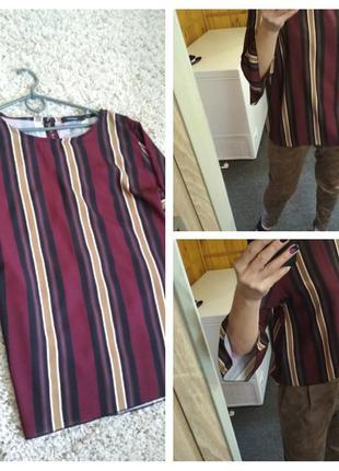 Стильная блуза полоса , рукавчик с воланом, today, p. 12_14