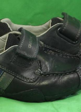 Туфли geox размер 27