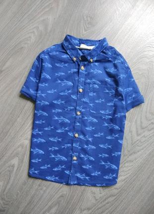 110р h&m тэниска рубашка футболка