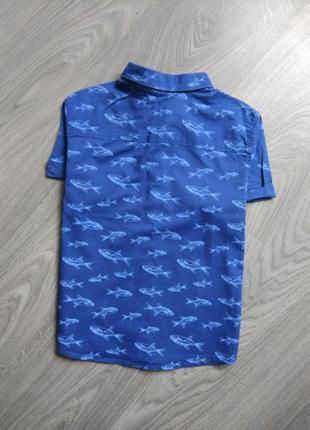 110р h&m тэниска рубашка футболка2 фото